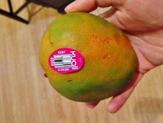 The King of Mangoes in the US